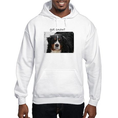 Got Snow? Hooded Sweatshirt