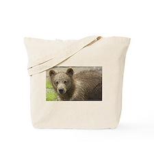 Brown Bear Art Tote Bag