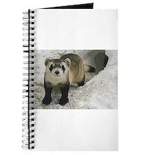 Black-Footed Ferret Art Journal