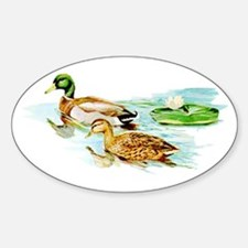 Mallard Ducks Oval Decal
