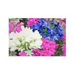 Fireworks Flowers Rectangle Magnet (100 pack)