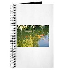 Koi Pond Journal
