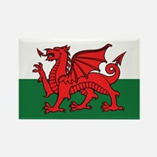 Flag of Wales Rectangle Magnet (100 pack)