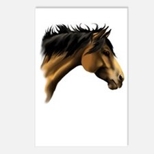 BuckSkin Horse Face Postcards (Package of 8)