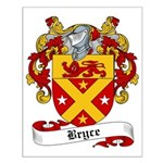 Bryce Family Crest Small Poster