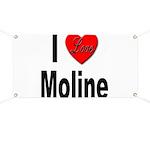 I Love Moline Banner