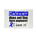 Cancer survivor Magnets