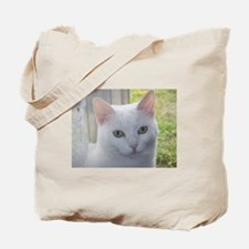 Sugar Kitty Collection Tote Bag