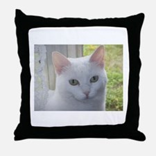 Sugar Kitty Collection Throw Pillow