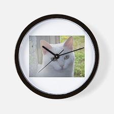 Sugar Kitty Collection Wall Clock