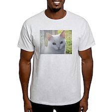 Sugar Kitty Collection T-Shirt