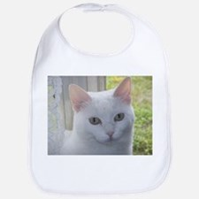 Sugar Kitty Collection Bib