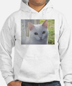 Sugar Kitty Collection Hoodie