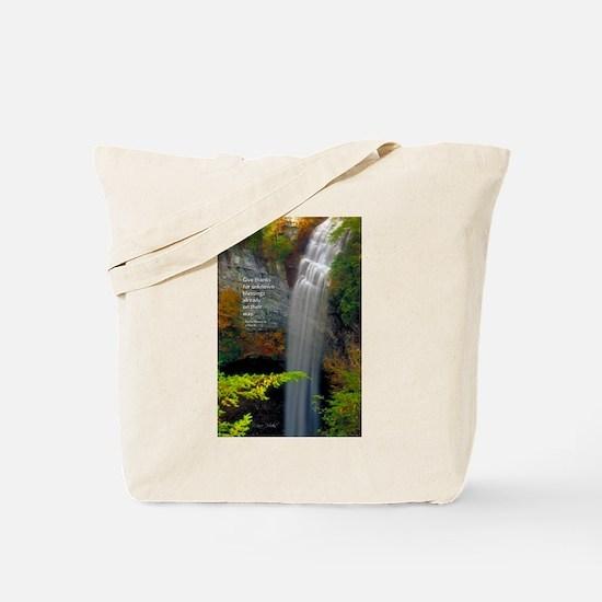 Waterfall Blessings Tote Bag