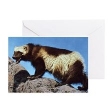 Wolverine Photo Greeting Cards (Pk of 10)