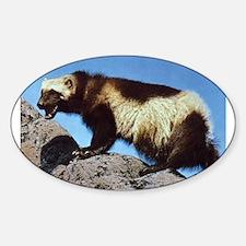Wolverine Photo Oval Sticker (10 pk)