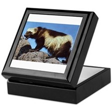 Wolverine Photo Keepsake Box