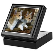 Double Trouble! Keepsake Box