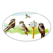 Purple Martin Bird Oval Decal