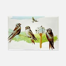 Purple Martin Bird Rectangle Magnet