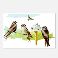 Purple Martin Bird Postcards (Package of 8)