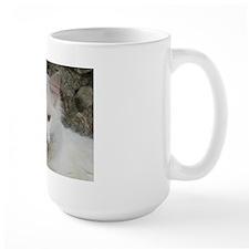 White Cat Photo Mug
