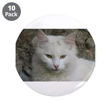 """White Cat Photo 3.5"""" Button (10 pack)"""
