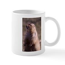 Prarie Dog Photo Mug