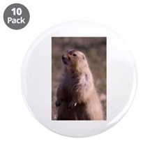 """Prarie Dog Photo 3.5"""" Button (10 pack)"""