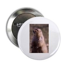 "Prarie Dog Photo 2.25"" Button (10 pack)"