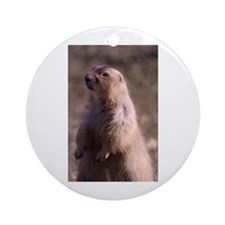Prarie Dog Photo Ornament (Round)
