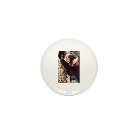 Pine Marten Photo Mini Button