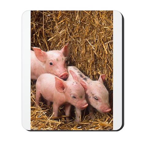 Piglets Photo Mousepad