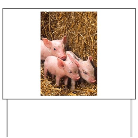 Piglets Photo Yard Sign