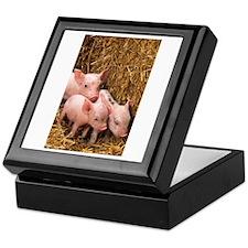 Piglets Photo Keepsake Box