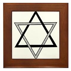 Solomon's Seal Framed Tile
