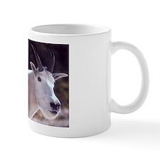 Mountain Goat Photo Mug