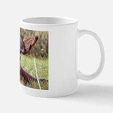 Moose Photo Mug
