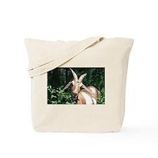 Goat Photo Tote Bag