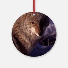 Coyote Photo Ornament (Round)