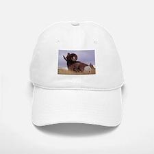 Bighorn Sheep Photo Baseball Baseball Cap