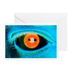 Catch the RED-Eye on Greeting Cards (Pk of 10)