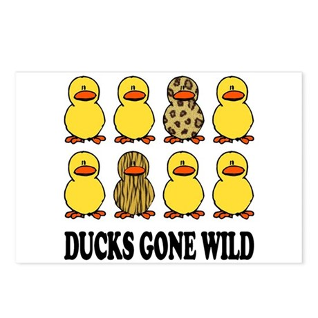 Ducks Gone Wild Postcards (Package of 8)