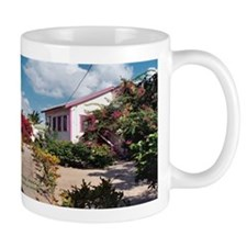 Cool Placencia Mug