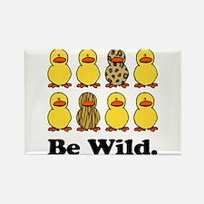 Be Wild Ducks Rectangle Magnet (10 pack)