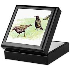 Starling Bird Keepsake Box