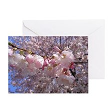 Cute Cherry blossoms Greeting Card