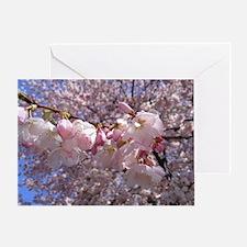 Cute Washington dc cherry blossom Greeting Card