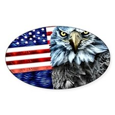 American Eagle USA- Oval Decal