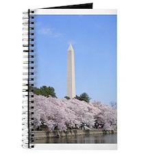 Cool Cherry blossom season washington dc Journal